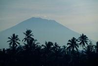 Bali, Volcano Gunung Agung, palm trees Fine Art Print