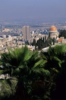 Haifa Cityscape from Bahai Dome, Israel Fine Art Print