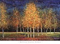 Evening Grove Fine Art Print