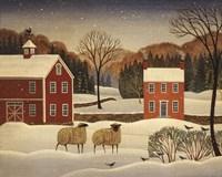 Winter Sheep I Fine Art Print