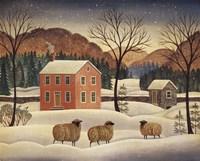 Winter Sheep II Fine Art Print