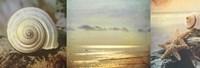 Coastal Triptych I Framed Print