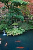 Japanese Garden, Tokyo, Japan Fine Art Print
