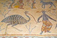 Mosaics, Moses Memorial Church, Mount Nebo, East Bank Plateau, Jordan Fine Art Print