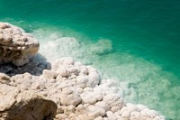 Jordan, Dead Sea, Salt on the sea shore Fine Art Print