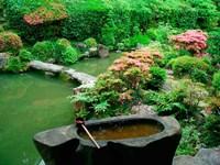 Green Zen Garden, Kyoto, Japan Fine Art Print
