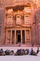 Camels at the Facade of Treasury (Al Khazneh), Petra, Jordan Fine Art Print