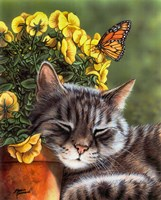 Afternoon Nap Fine Art Print