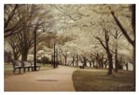 Springtime Stroll Fine Art Print