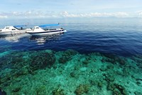 Diving Boat, Sipadan, Semporna Archipelago, Borneo, Malaysia Fine Art Print