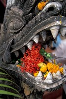 Flower Offerings in Stone Dragon's Mouth, Laos Fine Art Print