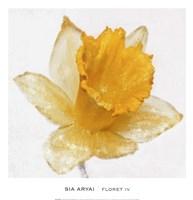 Floret IV Fine Art Print