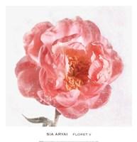Floret V Fine Art Print