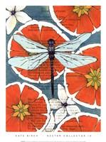 Nectar Collector IV Fine Art Print