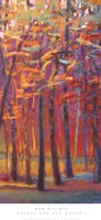 Orange and Red Woods II Fine Art Print