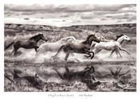 On The Run Fine Art Print