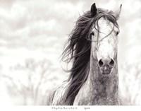 Spirit Fine Art Print