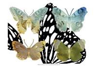 Layered Butterflies IV Framed Print