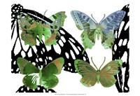 Layered Butterflies V Framed Print