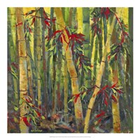 Bamboo Grove I Fine Art Print