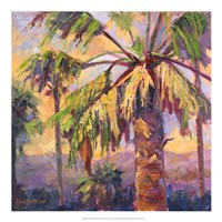 Desert Repose VI Fine Art Print