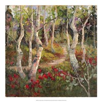 Four Seasons Aspens I Fine Art Print
