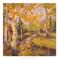 Four Seasons Aspens III Fine Art Print