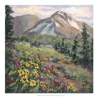 Western Vistas III Fine Art Print
