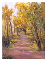 Cottonwoods Calling Fine Art Print