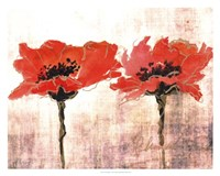 Vivid Red Poppies V Fine Art Print