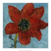 Summer Bloom I Framed Print