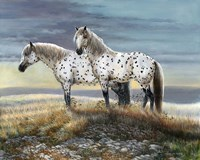 Appaloosa Sundown Fine Art Print