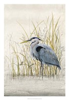 Heron Sanctuary II Framed Print