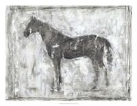 Equine Silhouette II Framed Print