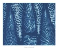 Cyanotype No.7 Fine Art Print