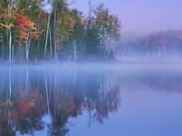 Autumn Morning and Mist Fine Art Print