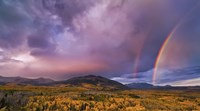 Double Rainbows Fine Art Print