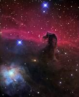 Horsehead Nebula Fine Art Print