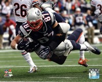 Rob Gronkowski Football Reception Fine Art Print