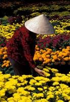 Gardens with Woman in Straw Hat, Mekong Delta, Vietnam Fine Art Print