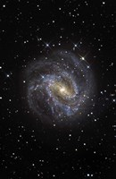 The Southern Pinwheel Galaxy Fine Art Print