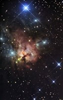 The Northern Trifid Nebula Fine Art Print