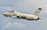 Italian Air Force AMX fighter aircraft Fine Art Print