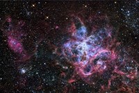 The Tarantula Nebula Fine Art Print