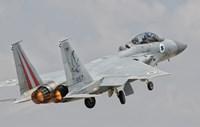 F-15D Eagle Baz Aircraft of the Israeli Air Force Fine Art Print