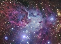 The Fox Fur Nebula Fine Art Print