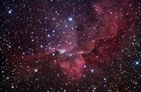 Emission Nebula in the Constellation Cepheus (NGC 7380) Fine Art Print