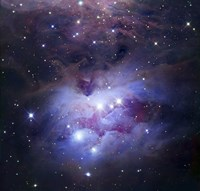 Reflection Nebula Northeast of the Orion Nebula Fine Art Print