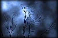 Stormy Skies Fine Art Print