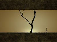 Tree at Sunset Fine Art Print